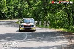 David_Skuta_RallyFeeling_Tikkurila_TPF_Rallye_a_Hidepito_Kupart_20190616_39
