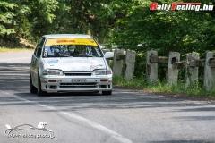 David_Skuta_RallyFeeling_Tikkurila_TPF_Rallye_a_Hidepito_Kupart_20190616_52