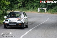 David_Skuta_RallyFeeling_Tikkurila_TPF_Rallye_a_Hidepito_Kupart_20190616_77